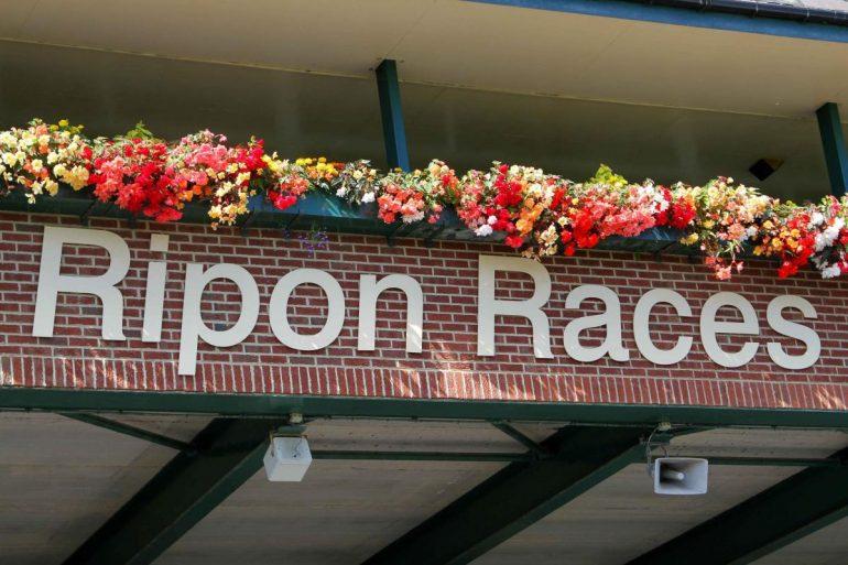 Classic Car Show at Ripon Racecourse